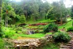 Botanical Garden of Queen Sirikit- Chiang Mai