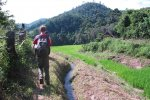 Trek along the rice fields